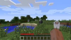 Minecraft_-_survival